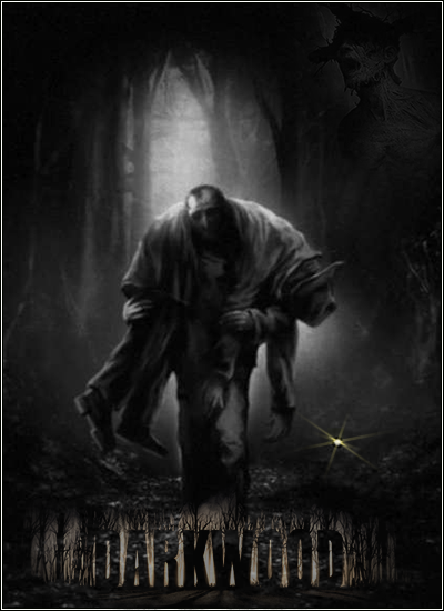 Darkwood (2017) PC | RePack by xatab